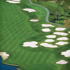 Arial view of golf course